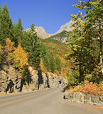 Going-to-the-Sun-Road, Glacier National Park. Going-to-the-Sun-Road Fall Colors, Glacier National Park, Montana Royalty Free Stock Image