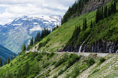 Going-to-the-Sun road in Glacier National Park, USA. Weeping Wall geological feature along Going-to-the-Sun road in Glacier National Park, USA Royalty Free Stock Image