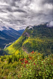 Going to the Sun Road. View from Going to the Sun Road on a sunny autumn morning in Glacier National Park, MT Stock Photography