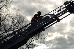 Going up. Fireman on a ladder stock photo