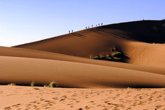 Dunes in Namibia, people walking up dune in Sossusvlei stock photos
