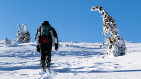 A young climber is moving slowly through deep snow up the mountain on a beautiful sunny day Royalty Free Stock Photos