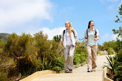 Going for a walk. Two friends walk outdoors along a wooden pathway stock photos