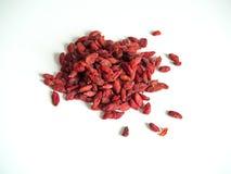 Goja berries Royalty Free Stock Photo