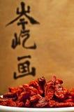 Goji berries Stock Images