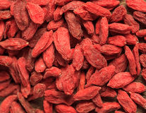 Goji berries Royalty Free Stock Image