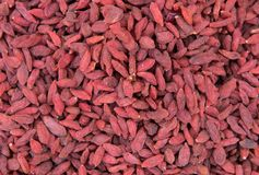 Goji berries. Background of dried goji berries Royalty Free Stock Photo