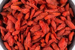 Goji berries close up Stock Photography