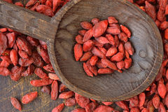 Goji berries. Dried goji berries on wooden spoon Stock Images