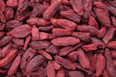 Goji berries. A fruit berry and medicinal plant Stock Images