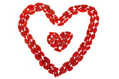 Goji berries heart shaped isolated on white Stock Photography