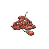Goji berries icon on white background. Stock Images