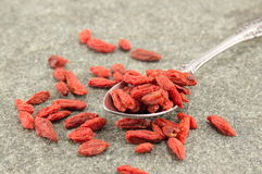 Goji berries in spoons Royalty Free Stock Images