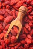 Goji berries in wooden scoop Royalty Free Stock Image