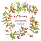 Goji berry. Goji berries vector set on white background Royalty Free Stock Photo
