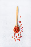 Goji berry or Chinese wolfberry Stock Image