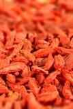 Goji berry Stock Images