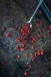 Goji Berry Royalty Free Stock Photos