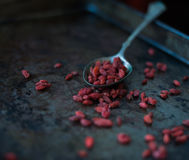 Goji Berry Royalty Free Stock Images