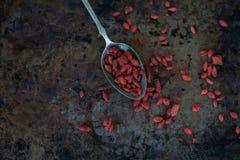 Goji Berry Stock Image