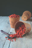 Goji berry fruit. Stock Photography