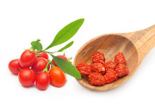 Goji berry isolated Royalty Free Stock Photography