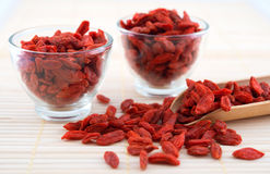 Goji berry, wolfberry or lycium Stock Photos