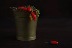 Goji berrys Royalty Free Stock Photography