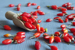 Goji berrys Stock Images