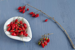Goji berrys Royalty Free Stock Images