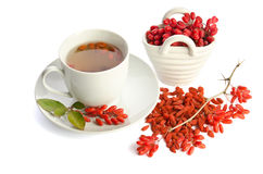 Goji fresh antioxidant tea Royalty Free Stock Photography