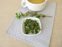 Goji leaves tea royalty free stock photography