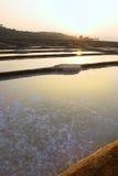 GOKARNA,INDIA - Feb 27: Salt plantation near Gokarna, India. Stock Photography