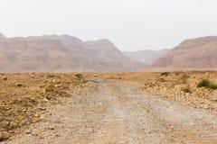 Gola dei wadi della strada del deserto Fotografia Stock
