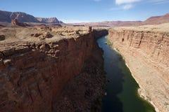 Gola del fiume di colorado attraverso il deserto Fotografia Stock