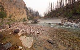 Gola dell'insenatura del prato su South Fork del fiume a testa piatta nell'area di Bob Marshall Wilderness nel Montana U.S.A. fotografie stock libere da diritti