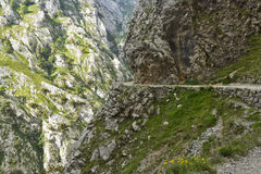 Gola delle cure del fiume in Asturie fotografia stock libera da diritti