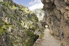 Gola delle cure del fiume in Asturie fotografie stock libere da diritti