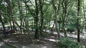 Gola di Dantovo nelle vicinanze della città di Goryachiy Klyuch Russia archivi video
