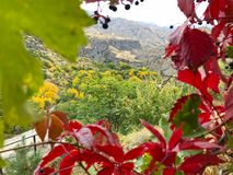 Gola di Garni, Armenia Immagine Stock