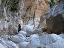 Gola di Gorropu. Through sardinian canyon Gorropu dried river Stock Images