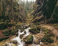 Gola di Janosikove Diery/canyon, Mala Fatra, Slovacchia Fotografia Stock