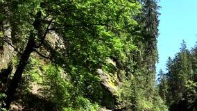 Gola di Kamnitz, Boemia, repubblica Ceca stock footage