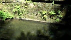 Gola di Kamnitz, Boemia, repubblica Ceca archivi video