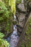 Gola di Tolmino, Slovenia Fotografia Stock
