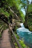 Gola di Vintgar e percorso di legno in Slovenia Fotografia Stock