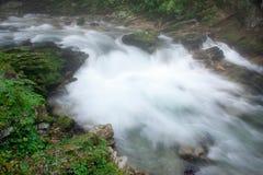 Gola di Vintgar nelle alpi della Slovenia Julian Immagini Stock Libere da Diritti