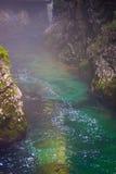 Gola di Vintgar nelle alpi della Slovenia Julian Fotografia Stock Libera da Diritti
