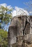 Gola Mareeba del granito nel Queensland del nord Immagine Stock