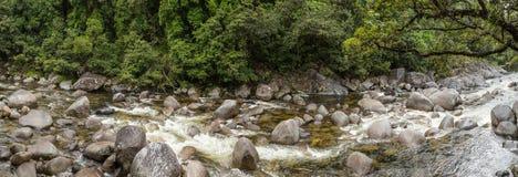 Gola n di Mossman la foresta pluviale di Daintree, Queensland Australia immagine stock libera da diritti